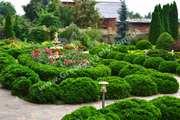Ландшафтный дизайн от «Green Angels». Озеленение.